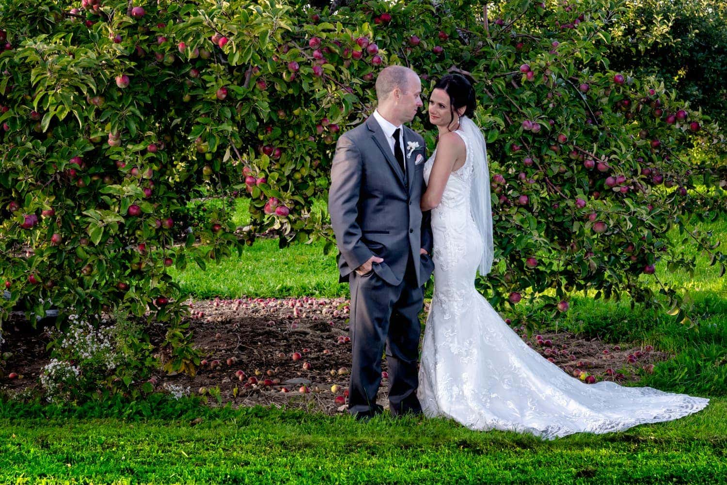bride and groom in an embrace surrounded by an apple orchard at the Old Orchard Inn in the Annapolis Valley