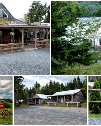 Hatfield Farm barn style weddings, the grounds for the ceremony and reception.