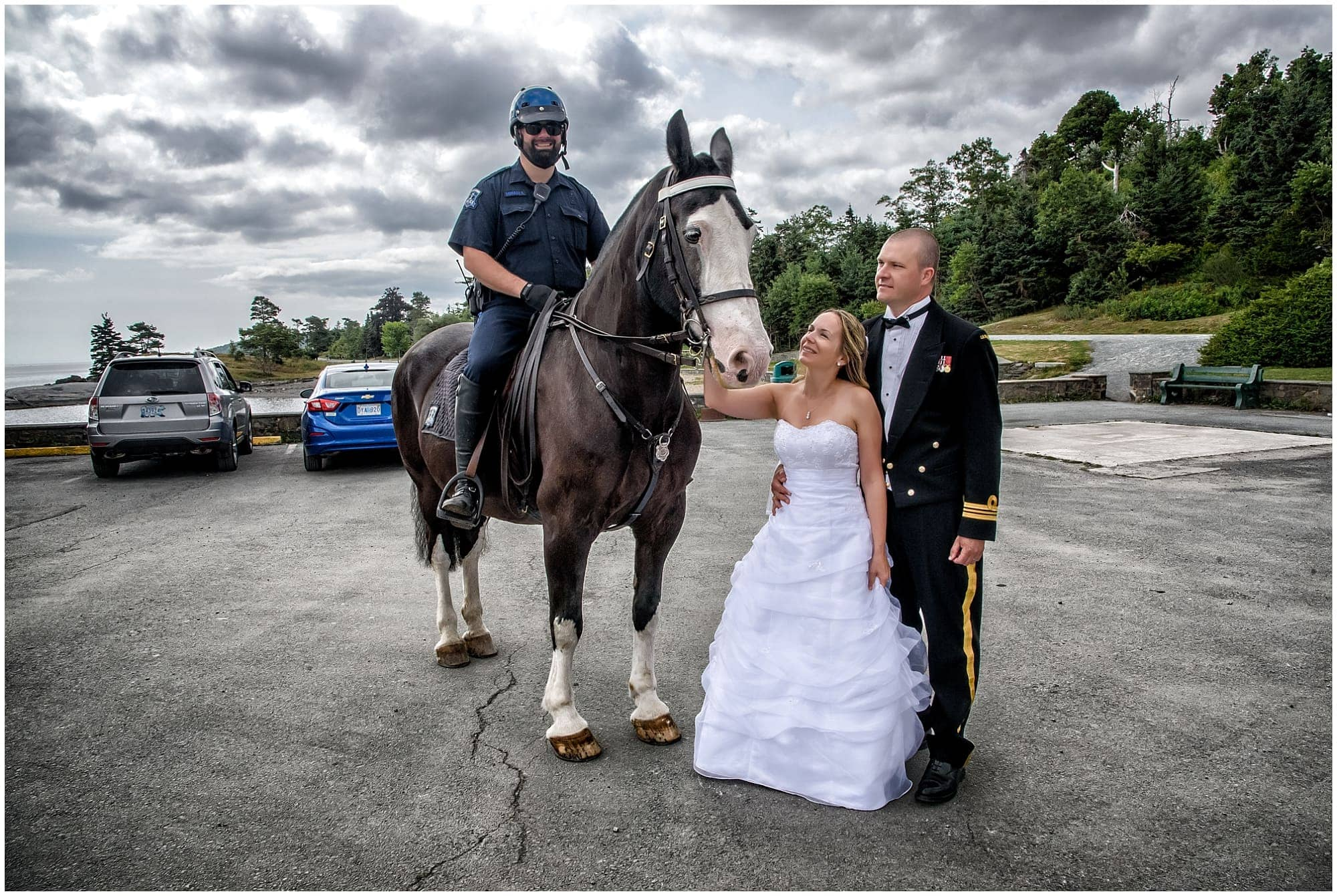 The bride and groom pet a police horse in Point Pleasant Park Halifax, NS.