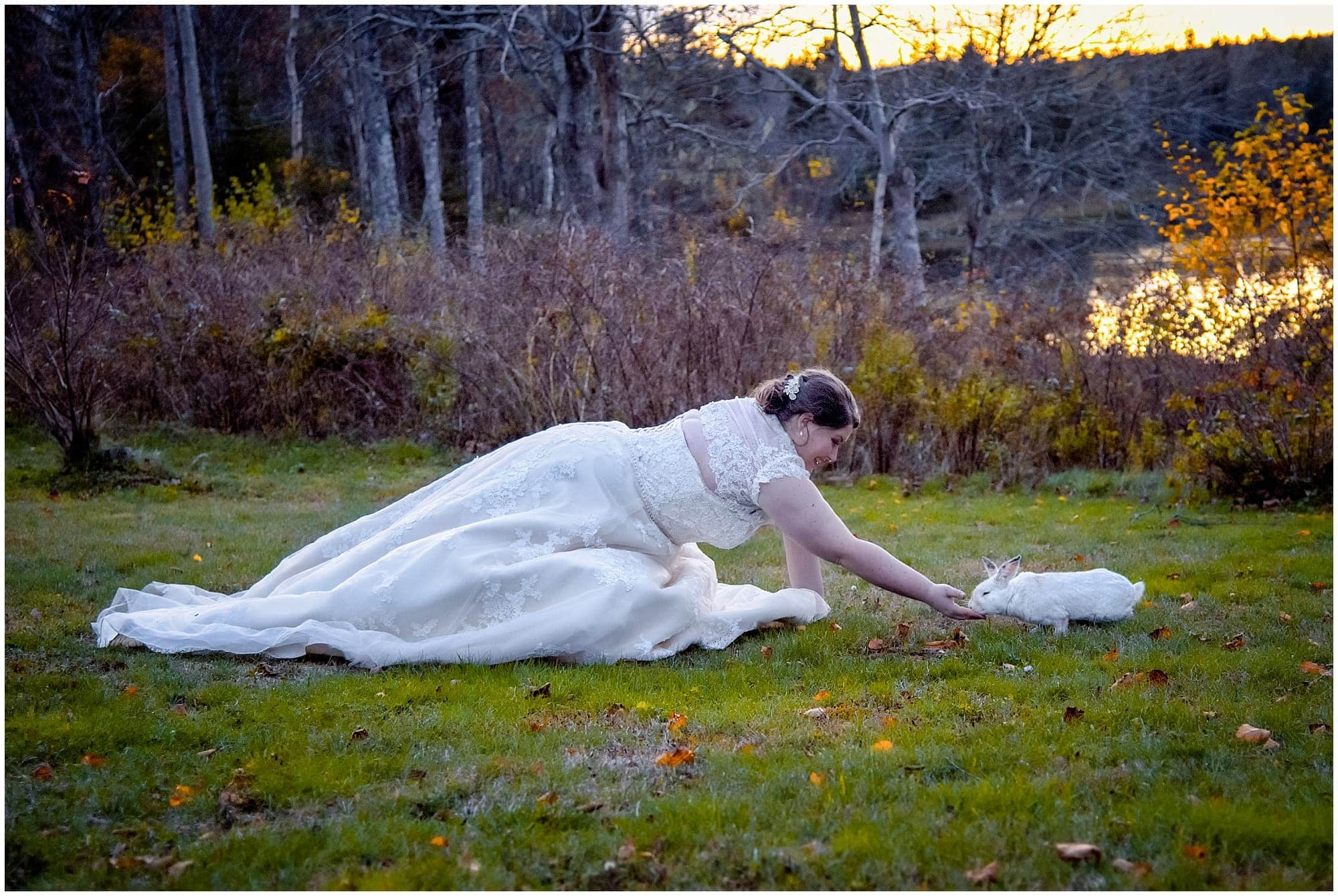The bride feeding a bunny during her White Point wedding.