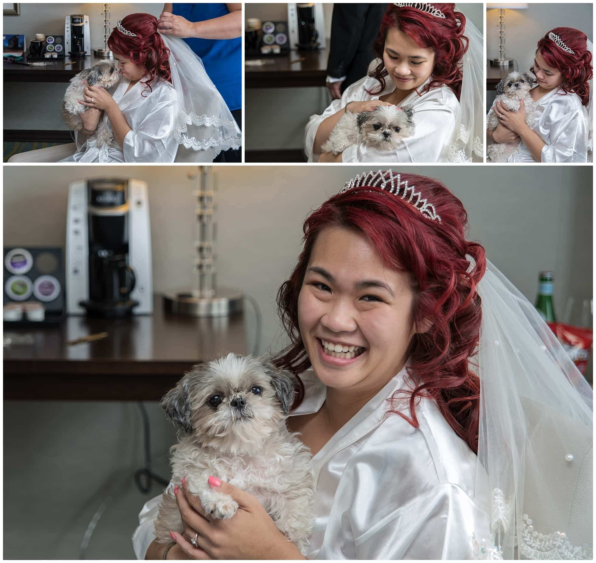 The bride shows off her little dog who will be with her during the wedding at the Atlantica Hotel in Halifax.