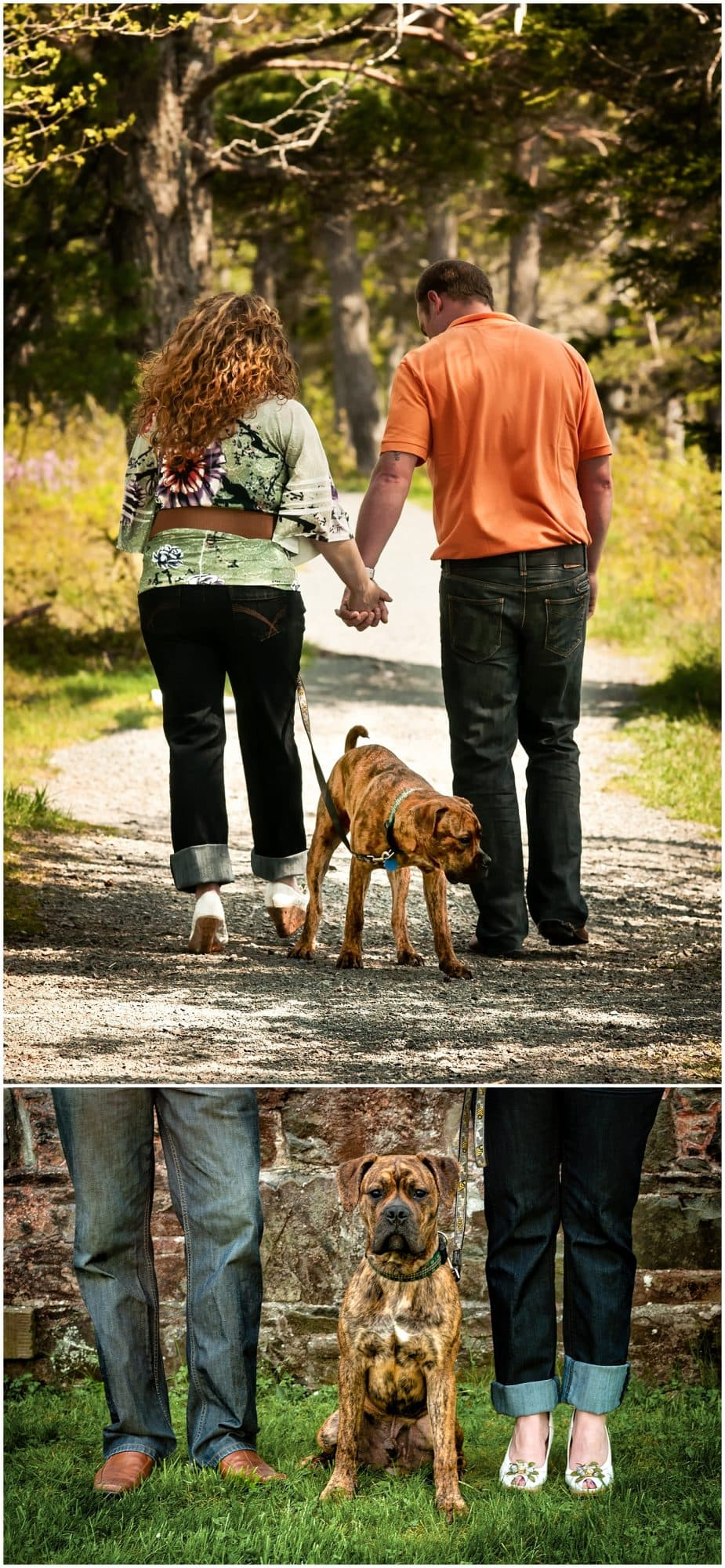 Couple in love walking with their dog posing for engagement photos at the Mount Uniacke House in Nova Scotia.